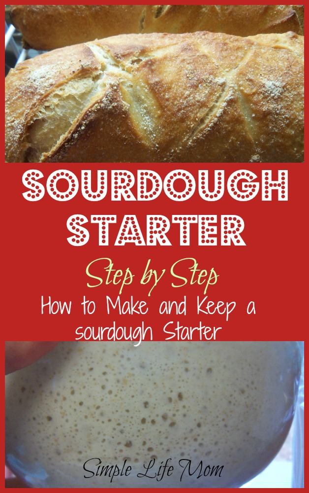 How to Make a Sourdough Starter and keep it fed by Simple Life Mom