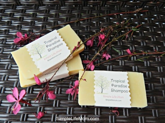 2014 Best Homemade Beauty Recipes - Tropic Paradise Shampoo Bars by Simple Life Mom
