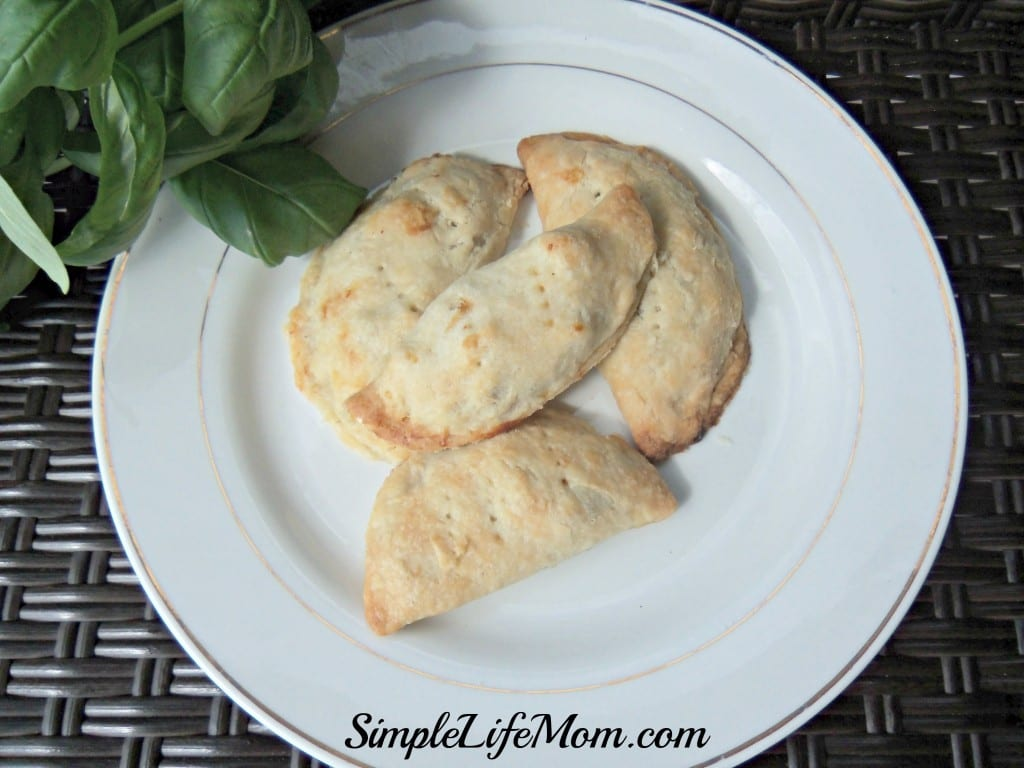 Hand Held Chicken Pies - Homemade pies great for taking on picnics, potlucks, and great with kids