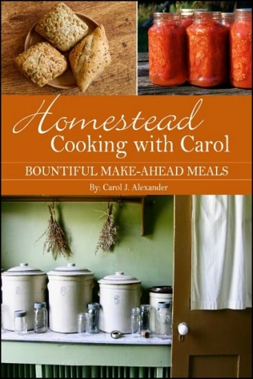 homestead cooking with carol cookbook giveaway - great ideas, meal planning, and down home recipes