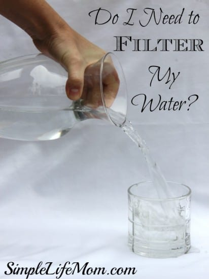 Do I Need to Filter my Water?