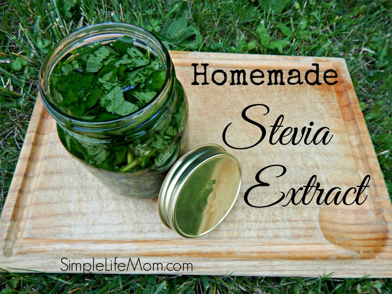 Homemade Stevia Extract