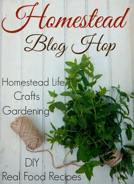 Homestead Blog Hop every Wednesday featuring real food recipes, natural health remedies, DIY, crafts, Gardening Tips, and more...