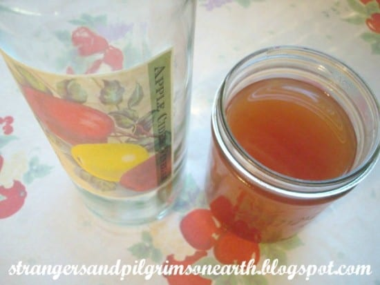 Homeastead Blog Hop Feature - Save Your Scraps. Make Apple Cider from Strangers and Pilgrims on Earth