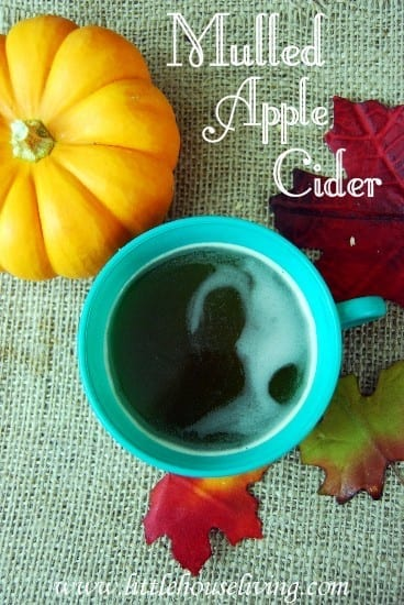 Featured on the Homestead Blog Hop - Mulled Apple Cider