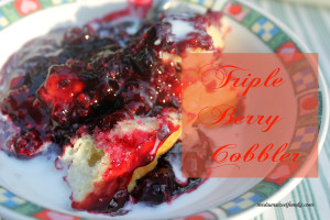 Featured on the Homestead Blog Hop - Triple Berry Cobbler from Medium Sized Family