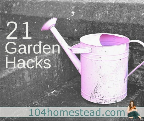 Featured on the Homestead Blog Hop - 21 garden-hacks