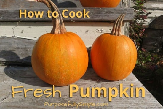 Featured on the Homestead Blog Hop - How-to-Cook-Fresh-Pumpkin