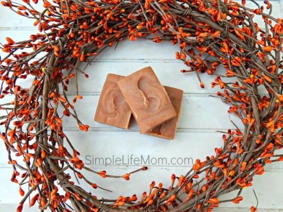 5 Fall Soap Recipes with essential oil blends from Simple Life Mom