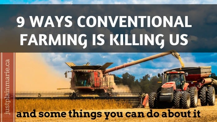 Featured on the Homestead Blog Hop - conventional farming killing us