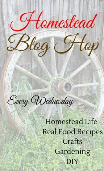 Looking for a little homestead inspiration?? Check out the Homestead Blog Hop every Wednesday for all things homesteading!