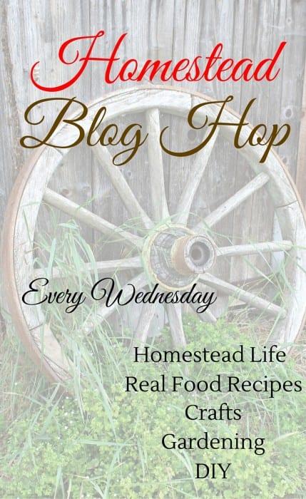 Homestead Blog Hop 150