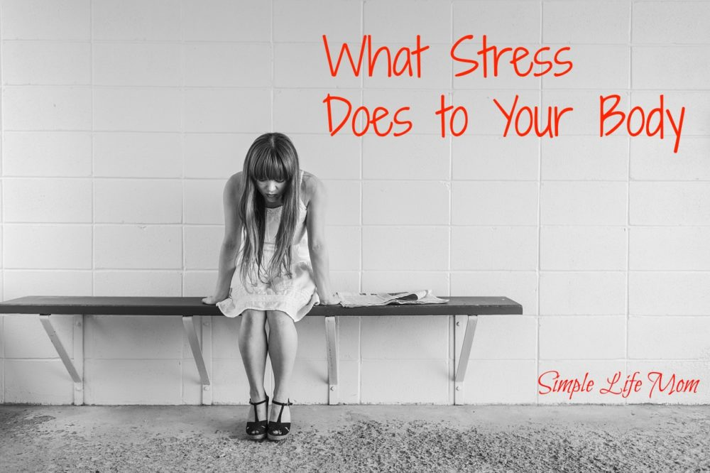 What Stress Does to Your Body plus 4 Things you can do now from Simple Life Mom