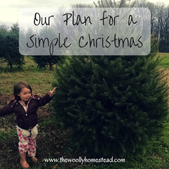 featured-on-the-homestead-blog-hop-our-plan-for-a-simple-christmas