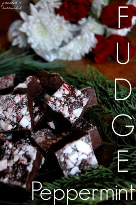 homestead-blog-hop-feature-peppermint-fudge
