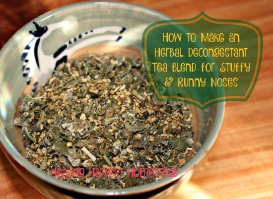 homestead-blog-hop-feature-how-to-make-decongestant-tea