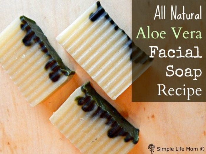 All Natural Aloe Vera Facial Soap Recipe with Spirulina from Simple Life Mom