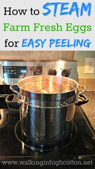 Homestead Blog Hop Feature how-to-steam-eggs-for-easy-peeling