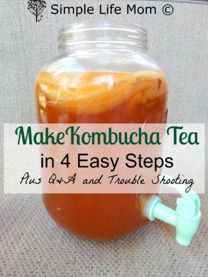 How To Make Kombucha Tea In 4 Easy Steps Get Probiotics Vitamins And