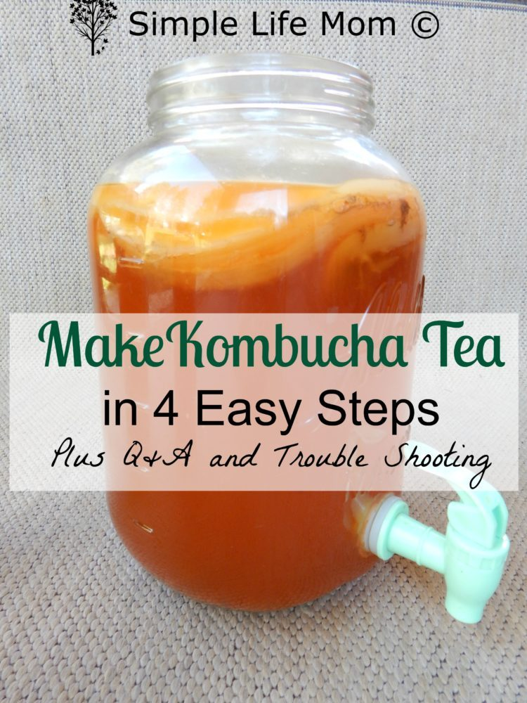 how to make kombucha easy step by step instructions. Black Bedroom Furniture Sets. Home Design Ideas