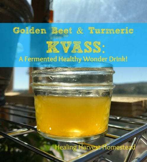 Homestead Blog Hop Feature - Golden Beet and Turmeric Kvass