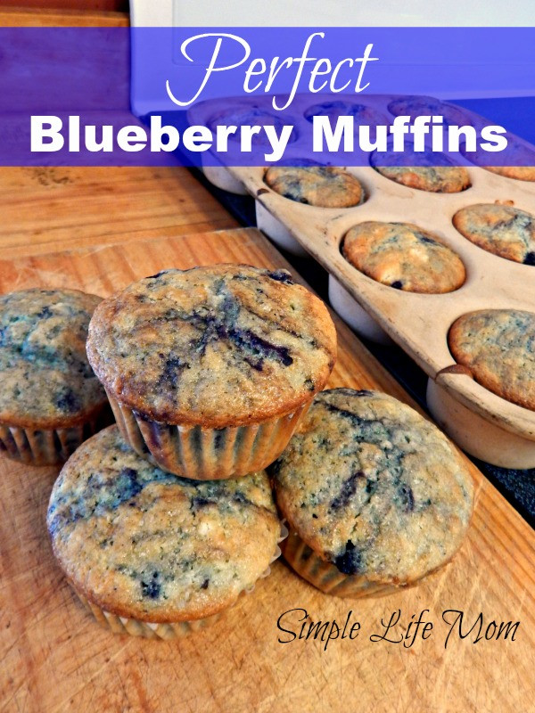 Perfect Blueberry Muffin Recipe from Simple Life Mom