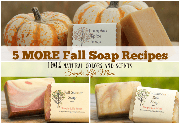 5 More Fall Soap Recipes from Simple Life Mom