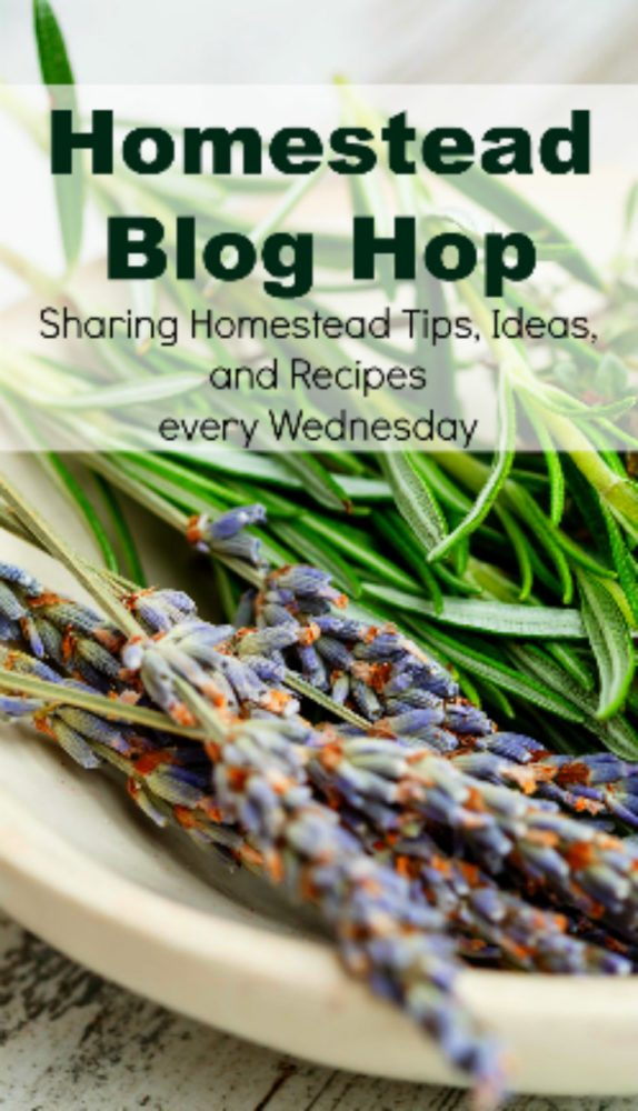 Homestead Blog Hop 161