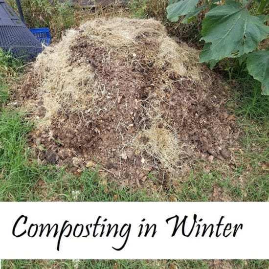 Homestead Blog Hop Feature - composting.winter