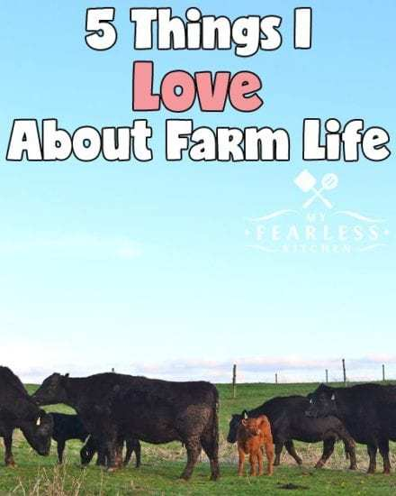 Homestead Blog Hop Feature - 5 Things I love about Farm Life