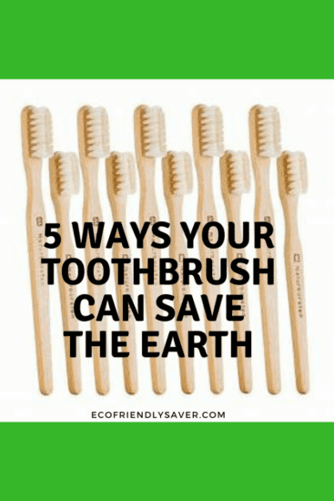 Homestead Blog Hop Feature - 5-Ways-Toothbrush-Save-the-Earth