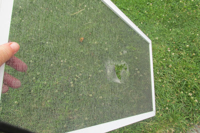 Homestead Blog Hop Feature DIY How to Repair a Window Screen