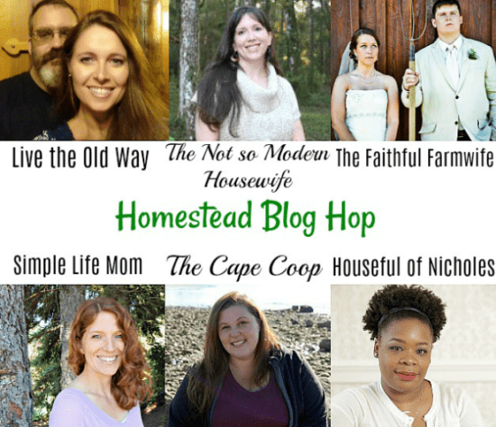 Homestead Blog Hop Hosts March 2018