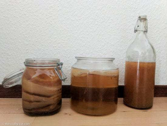 Homestead Blog Hop Feature - Start Making Kombucha