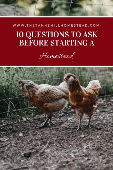 Homestead Blog Hop Feature - 10-Questions-to-Ask-Before-Starting-a-Homestead