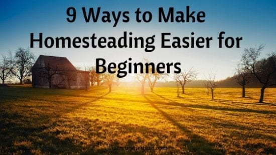 Hometead Blog Hop Feature - 9 ways to make homesteading easier for beginners