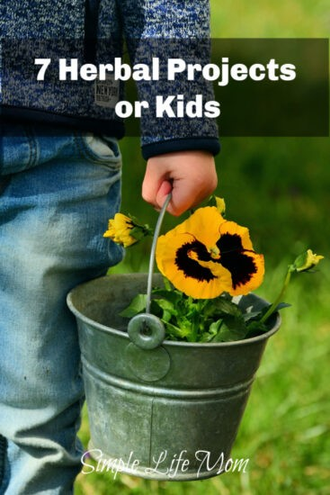 7 Herbal Projects for Kids - Fun Learning Activities from Simple Life Mom