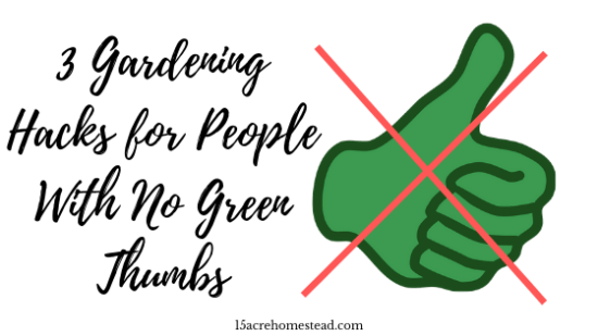 Homestead Blog Hop Feature - 3-Gardening-Hacks-for-People-With-No-Green-Thumbs