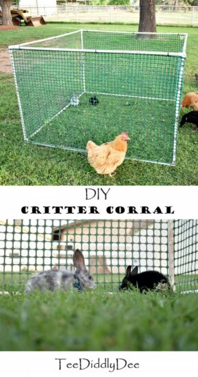 Homestead Blog Hop Feature - DIY Easy Critter Corral