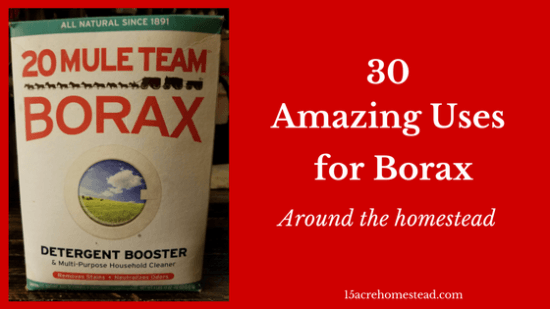 Homestead Blog Hop Feature - 30-Amazing-Uses-for-Borax-featured