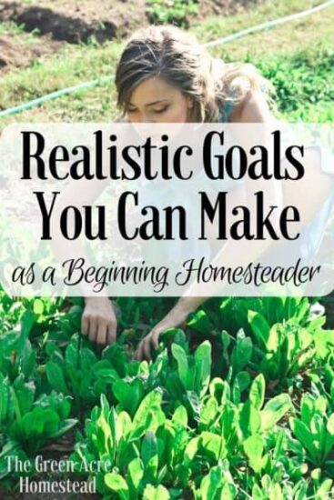Homestead Blog Hop Feature - realistic-goals-on-the-homestead