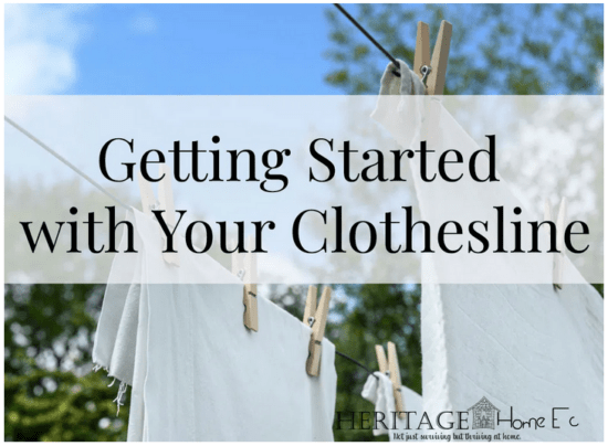 Homestead Blog Hop Feature - Getting Started with your Clothesline