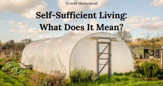 Hometead Blog Hop Feature - Self-Sufficient-Living_-What-Does-It-Mean