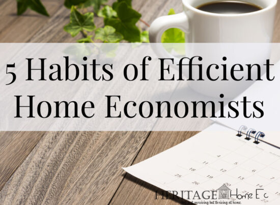 Homestead Blog Hop Feature - 5 Habits of an Efficient Home Economist