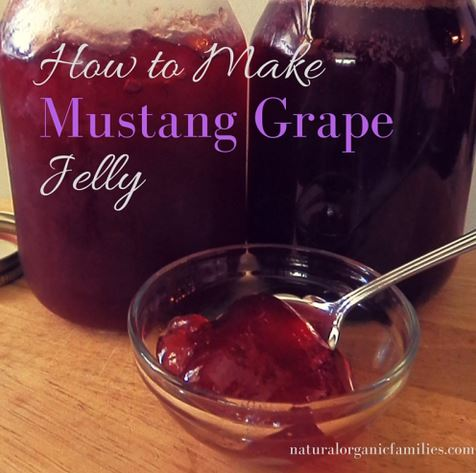 Homestead Blog Hop Feature - how to make mustang grape jelly